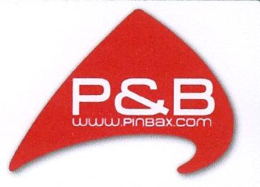 pinbax logo